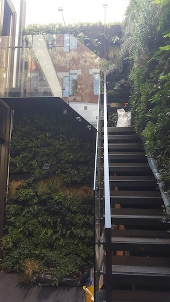 glass-balustrades-top-balustrades-london-surrey