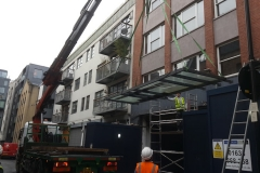 Canopy-removal